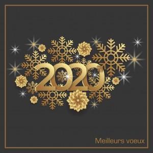 STARMAT vous souhaite une belle année 2020